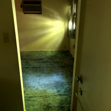 Flooded Basement Cleanup NY Image 3